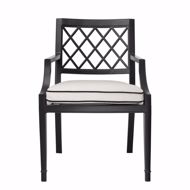 Picture of Dining Chair Paladium with arm